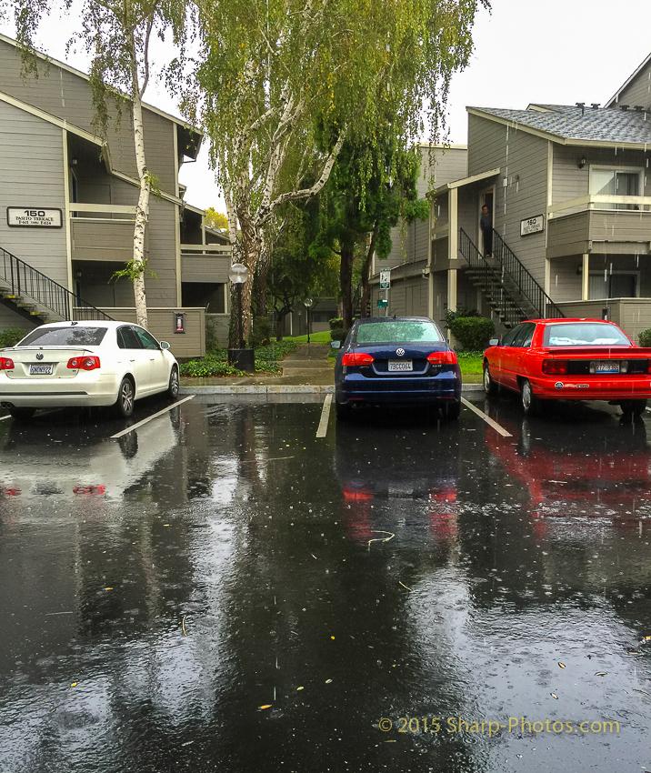 У нас дождь по расписанию