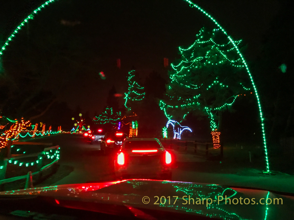 Рождественско-Новогодние огни