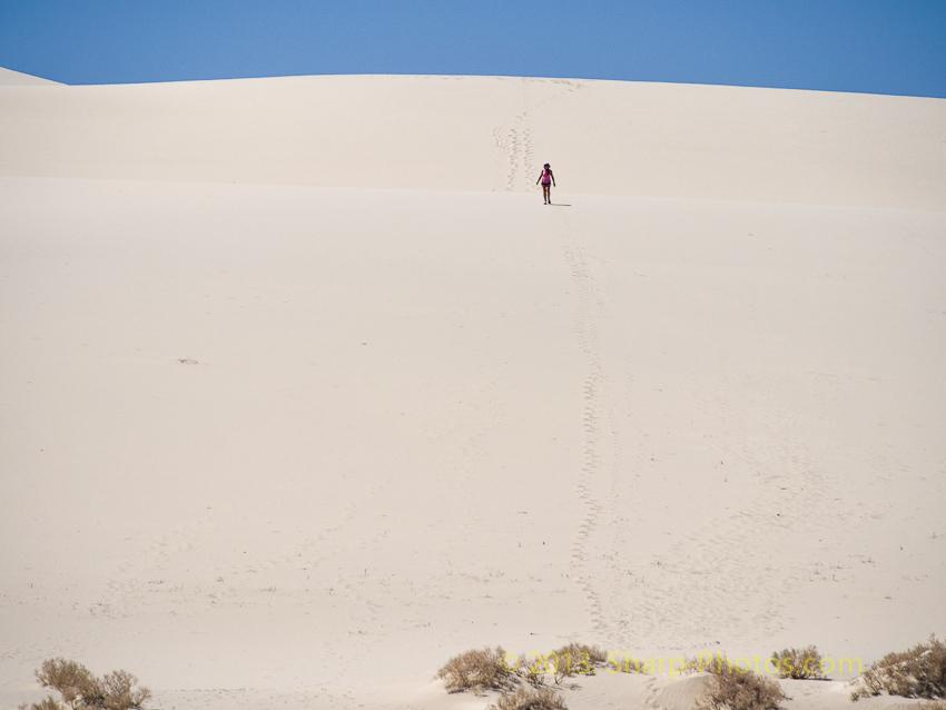 Американская Мечта: Пески пустыни Sands of the Desert 130424_105953__4241658