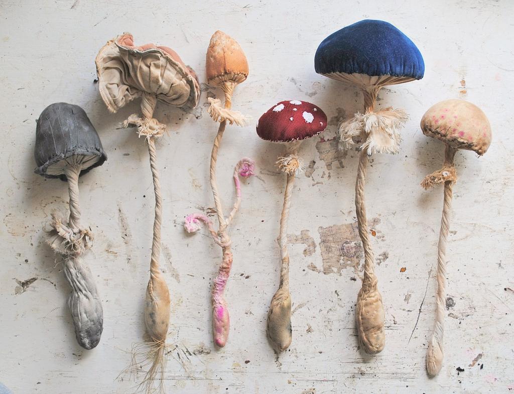 Как сшить грибы из ткани своими руками