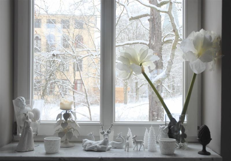http://pics.livejournal.com/rikki_t_tavi/pic/001whast