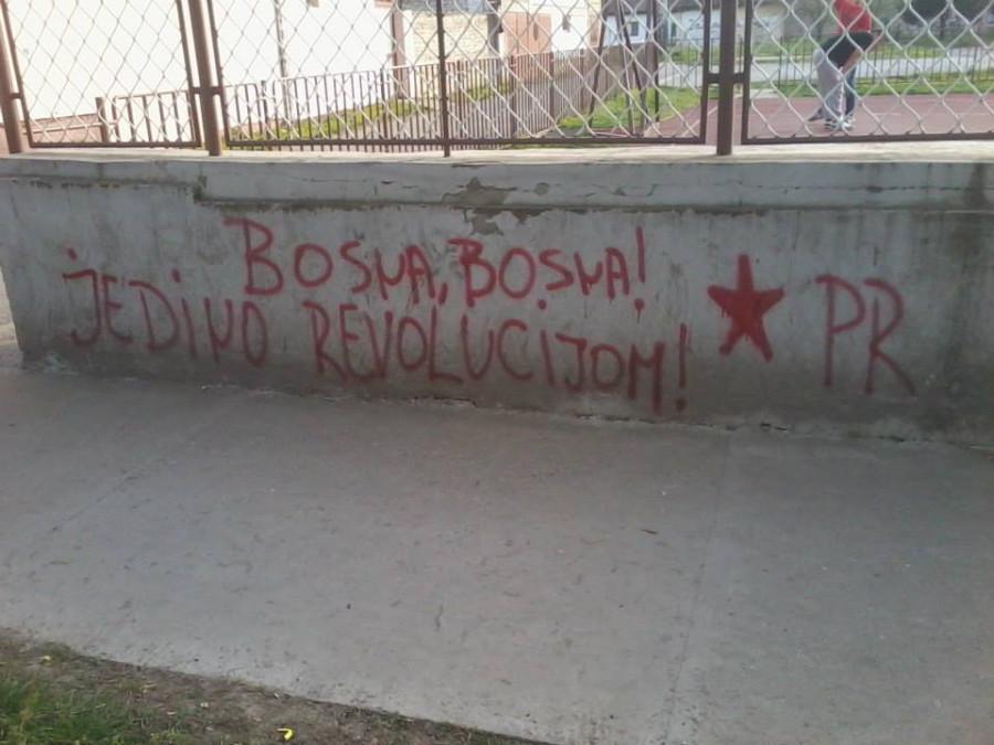 черногор01