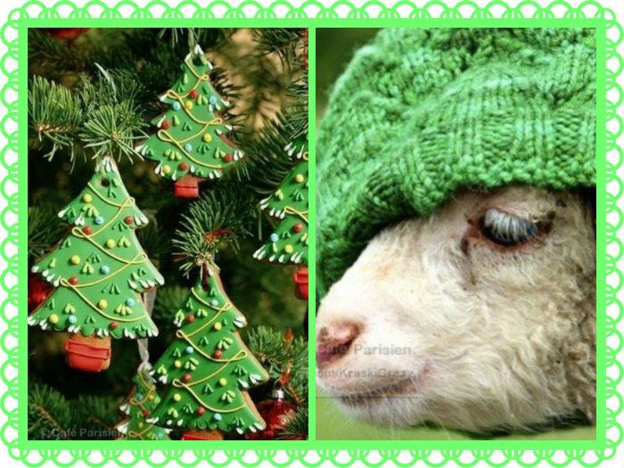 ny_goat 2