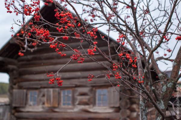 photo-bo.com-156