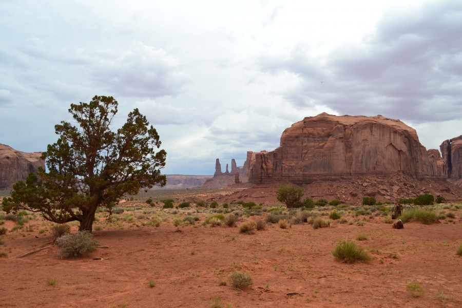 Grand Canyon, Monument Valley 362