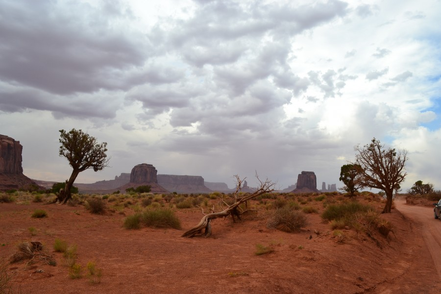 Grand Canyon, Monument Valley 361