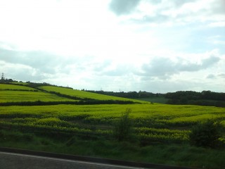 Lovely scenery along the way