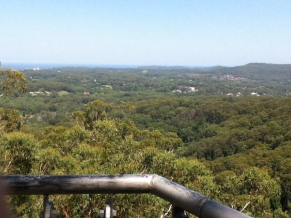 From Mt Elliot 002