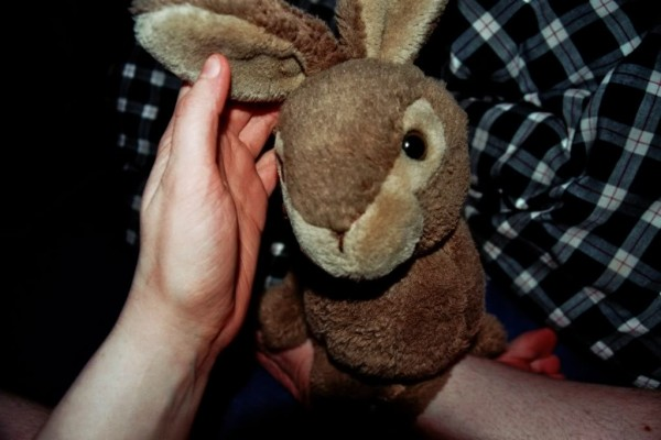 kiercs-bunny