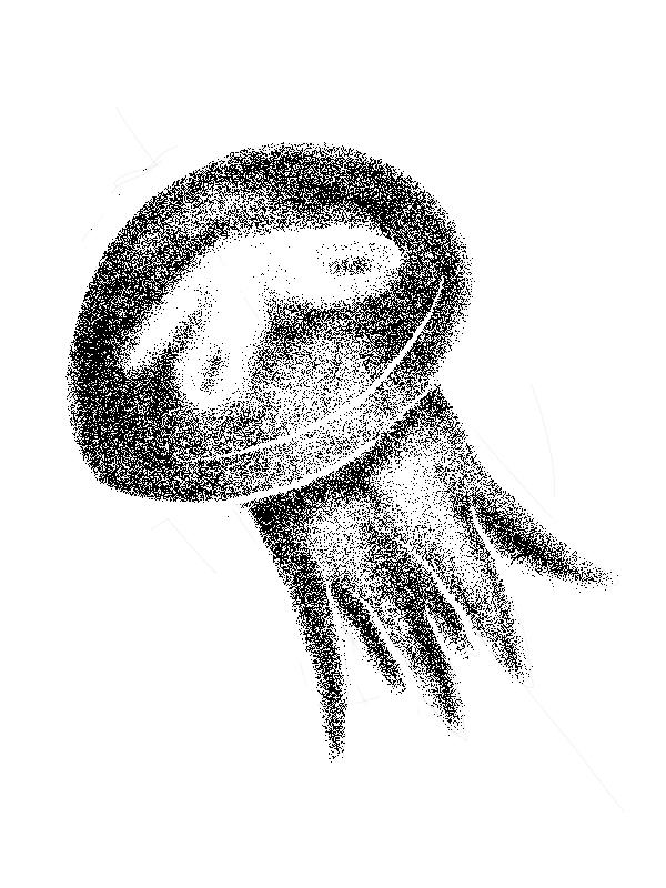 МедузаТонФактура