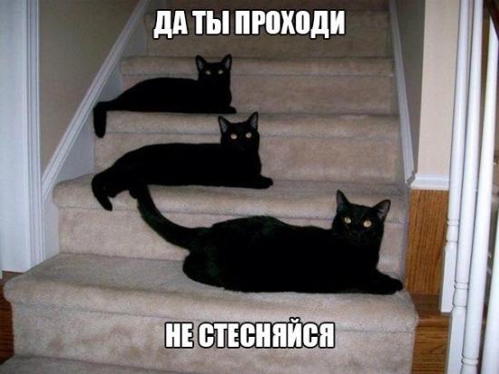 160813_original.jpg