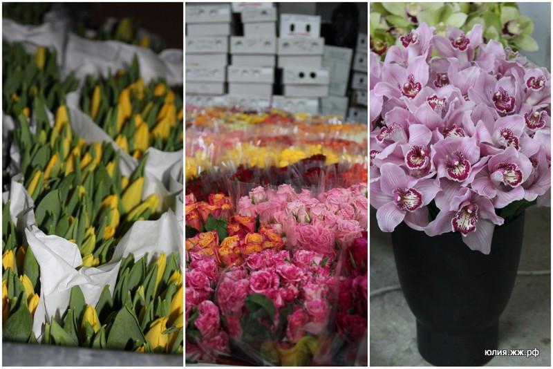 цветы 2013 ФФ