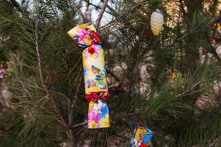Рождественская елка в Херсонесе