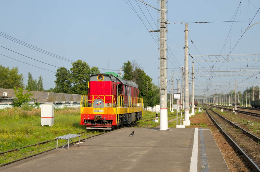 DSC_8101