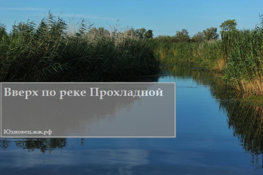 IMG_1469