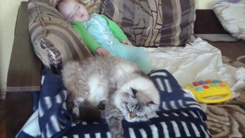 И засыпает с ним рядом!