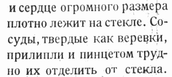 Дуров_действие_на_сердце