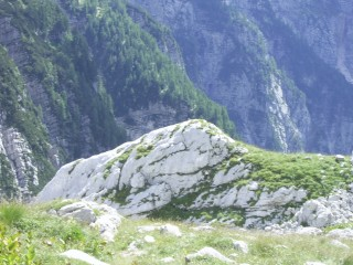 Can you spot the marmot? I swear there is one in this picture!