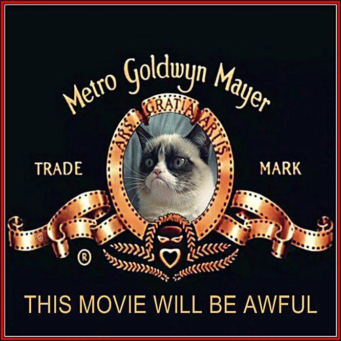 grumpy cat movie will be awful