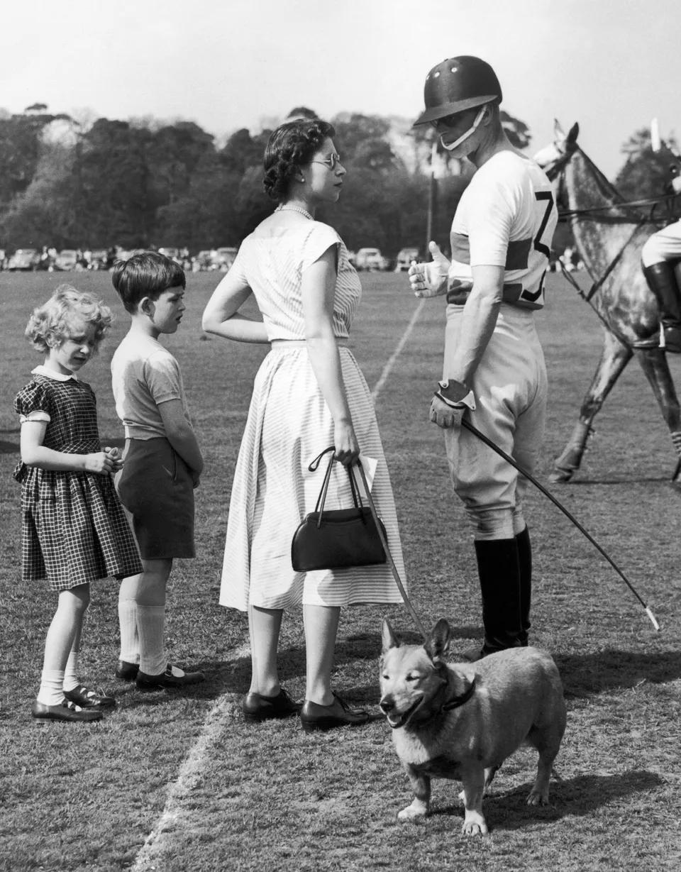 Игра в поло, в парке Windsor, 1956 г