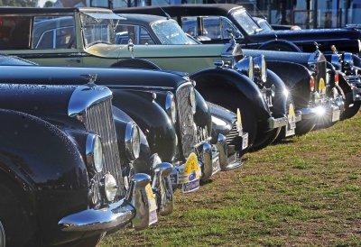В ралли обычно участвует более 100 автомоболей