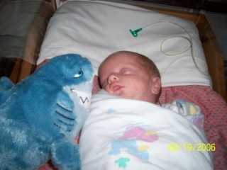 "two weeks old with a small disney ""bruce"" plushie"
