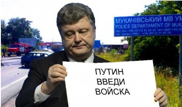 http://ic.pics.livejournal.com/rostow_na_donu/73876646/1293/1293_original.jpg