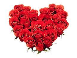 roseheart
