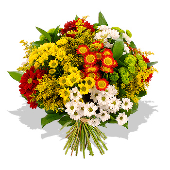 chrysanthemum_bouquet_ie