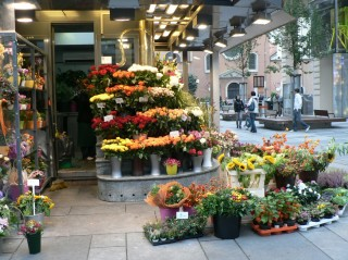 цветы на улице в Вене