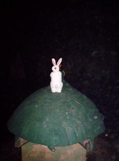 """Скульптура """"Заяц на черепахе"""" из парка Рёнак"""