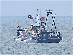 Diaoyu-tai ship 1
