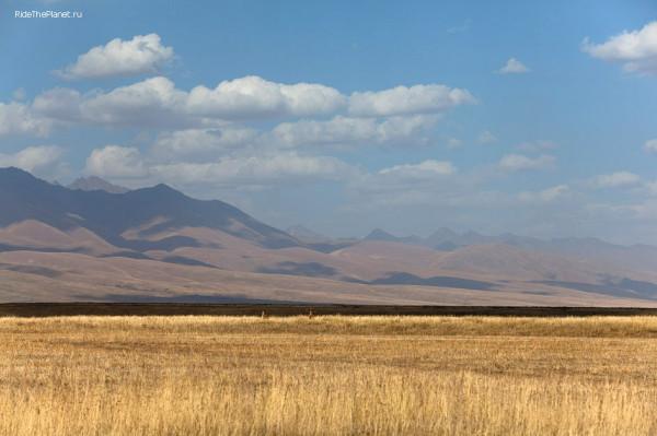 (c)KGalat_Kyrgizia_2012_IMG_9209