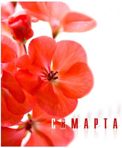 8_marta_35