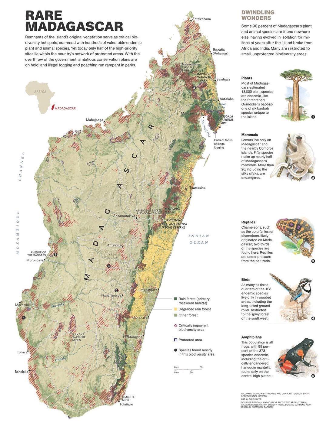 Мадагаскар (кликабельно)