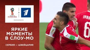 Обзор матча Сербия ─ Швейцария
