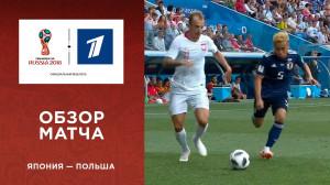 Обзор матча Япония ─ Польша