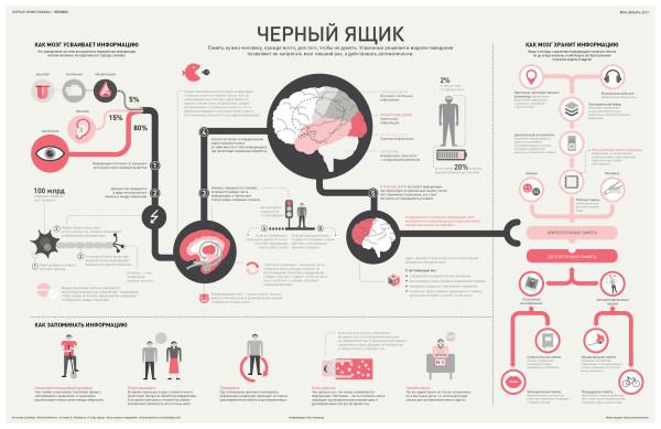инфографика-человек-мозг-Кликабельно-627741