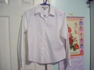 plain long sleeved blouse