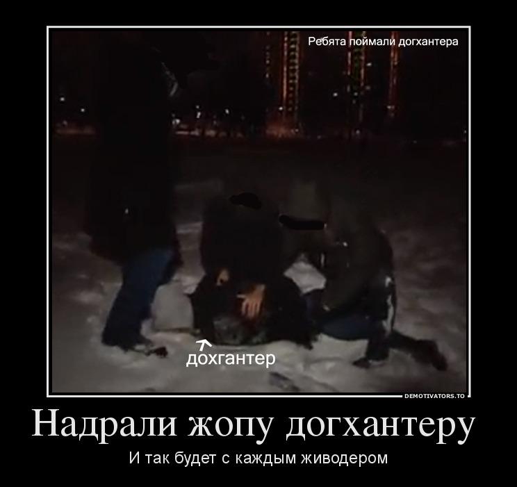 53116047_nadrali-zhopu-doghanteru-