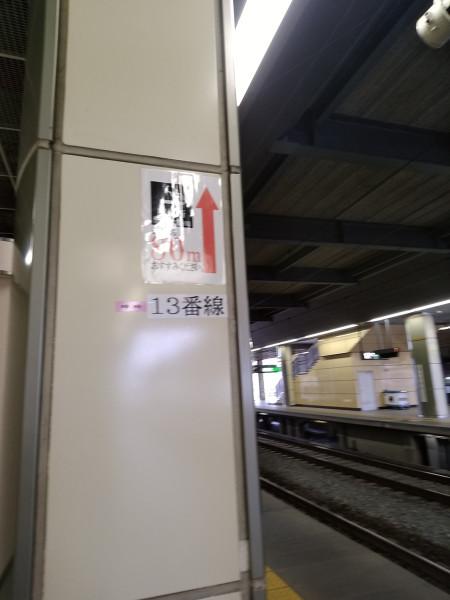 DSC_2805.jpg