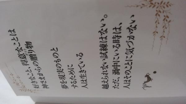 15297069708851786220353.jpg