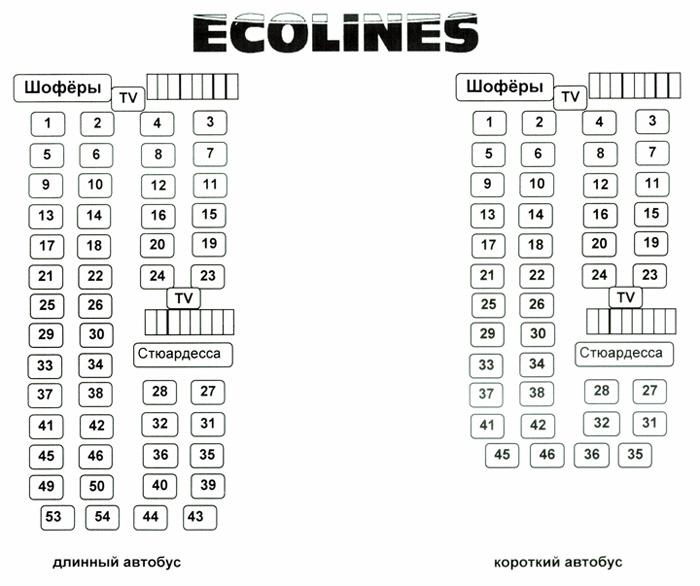 Схема салона на автобусах в 46