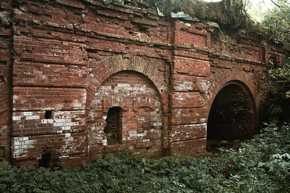 Высоцк, Крепость Тронгзунд