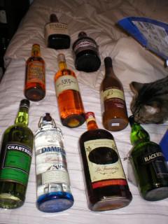 Shake Wants Scotch!