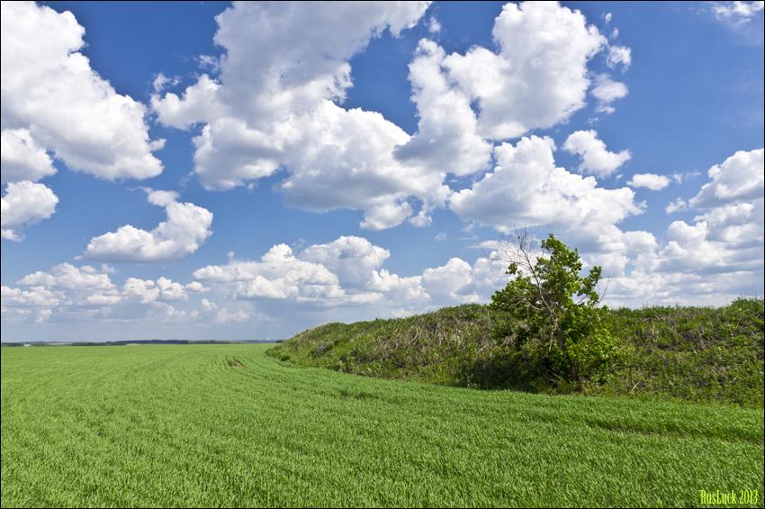 Граница с полем