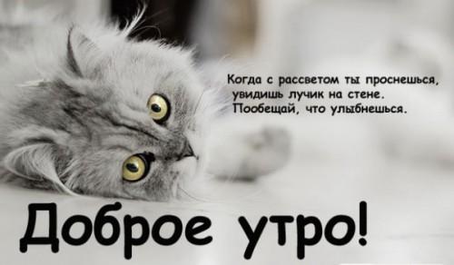 http://ic.pics.livejournal.com/ruslana_777/65965638/527455/527455_600.jpg