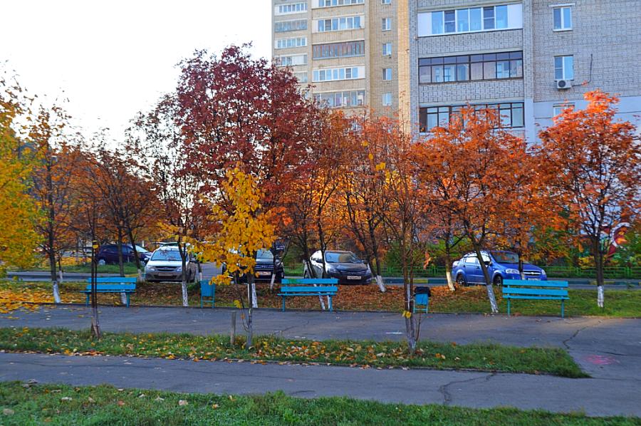 Мой оранжевый Подольск осень, очень, прелесть, просто, садик, когда, снежная, красиво, фотография, сделана, центре, балкона, Видео, детский, Покажу, красота, Кидались, листьями, признавайтесь, Какой