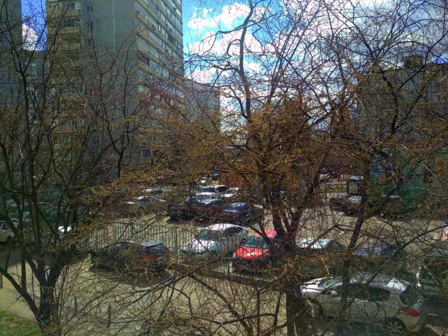 Видное на самоизоляции из моего окна