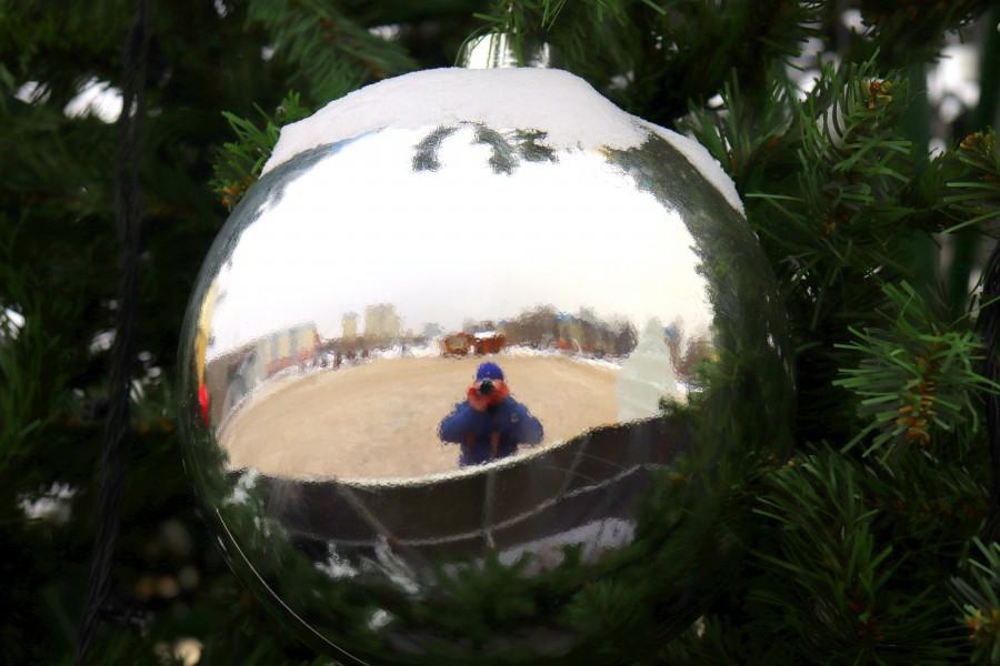 Новогоднее Видное